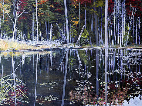 Northern Reflections by Dinny Madill