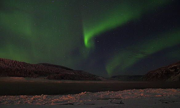 Northern Yukon Lights 1 by Phyllis Spoor
