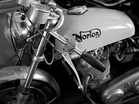 Norton by Susan Gauthier