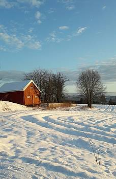 Norwegian Winter  by Jeanette Rode Dybdahl