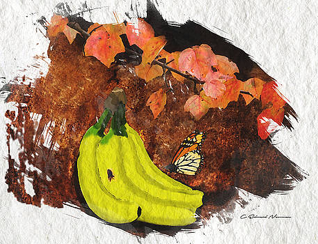 Not Just a Banana by Charles Newman