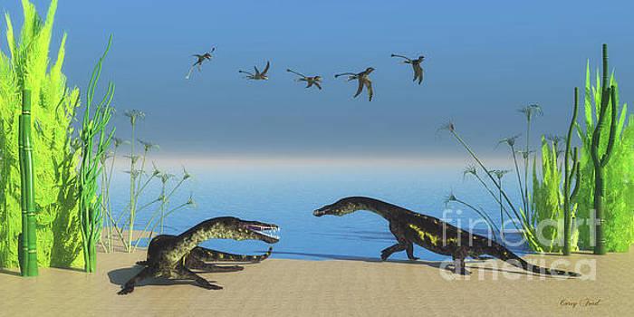 Corey Ford - Nothosaurus Reptile Beach
