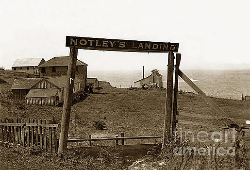 California Views Mr Pat Hathaway Archives - Notleys Landing Big Sur Coast By L. S. Slevin  May 1919