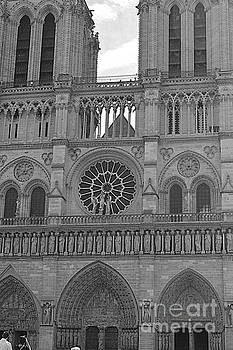 Notre Dame by Andy Thompson