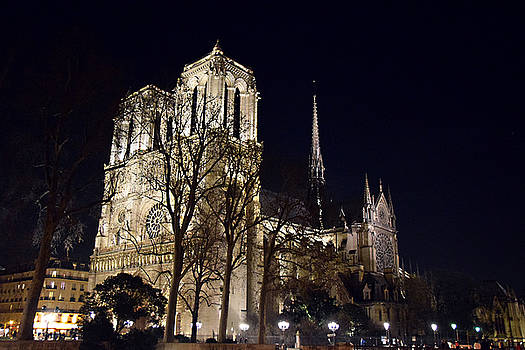 Notre Dame at Night 1 by Tim Stringer