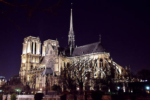 Notre Dame at Night 2 by Tim Stringer