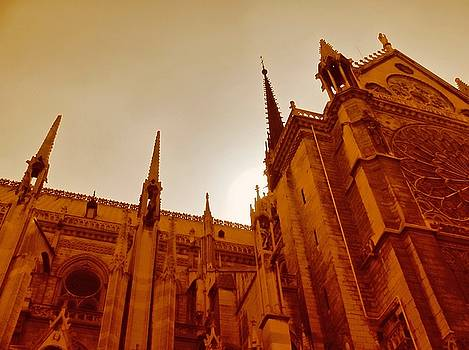 TONY GRIDER - NOTRE DAME AT SUNSET