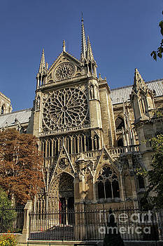 Patricia Hofmeester - Notre Dame cathedral