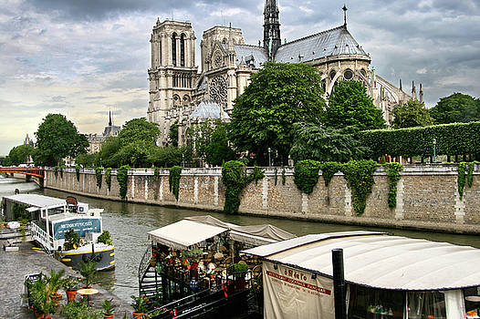 Notre Dame Cathedral by Seil Frary