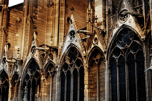Notre Dame by David Chasey