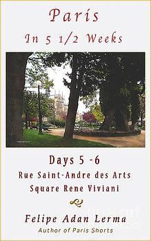 Felipe Adan Lerma - Notre Dame From Square Rene Viviani Cover Art