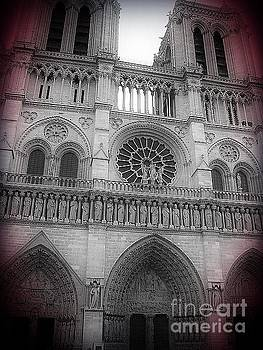 Lauren Williamson - Notre Dame