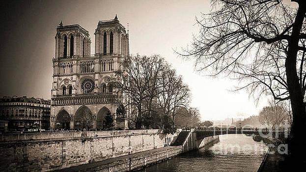 Notre Dame of Paris and The quays of the Seine. Paris. France. City by Bernard Jaubert