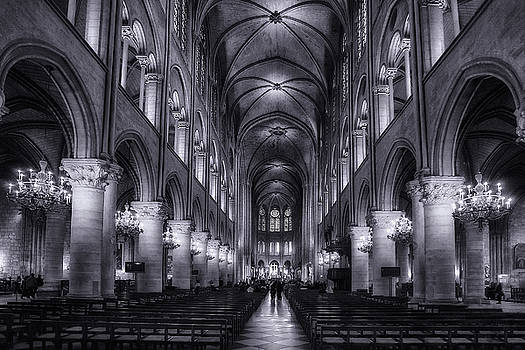 Notre Dame - Paris by Andrew Soundarajan