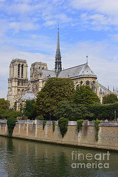 Notre Dame Paris by Andy Thompson