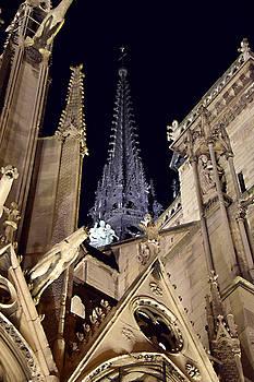 Notre Dame Spire by Tim Stringer