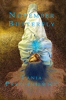 Don Mitchell - November Butterfly book cover