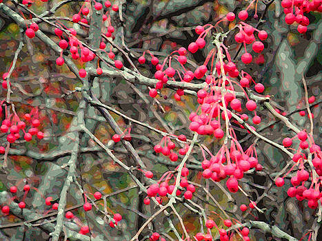 November Crabapples by Jean Hall