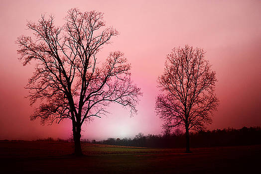 November Morning by Patricia Motley