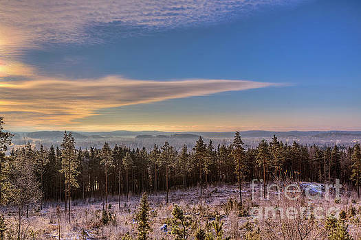 November Morning by Veikko Suikkanen