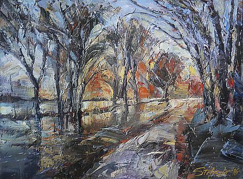 November by Stefano Popovski