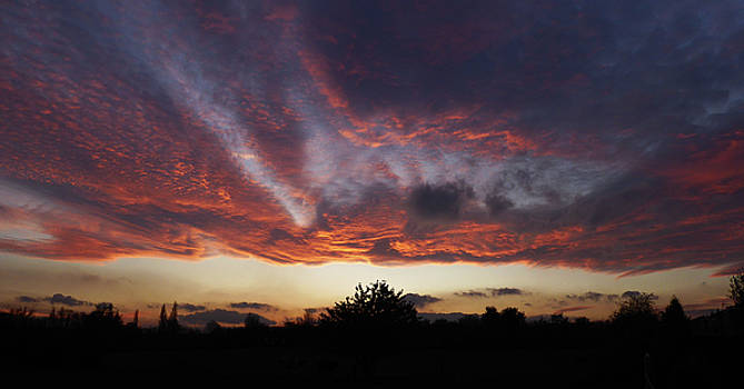 November Sunset 1 by Carol Lynch