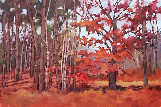 November Trees by Sue Dragoo Lembo