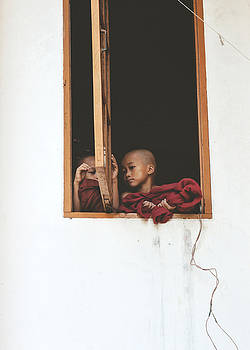 Novice Monks of Myanmar by Chase Chisholm