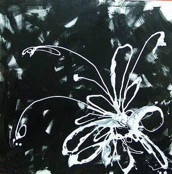 Nr 200 by Sonia Passoni