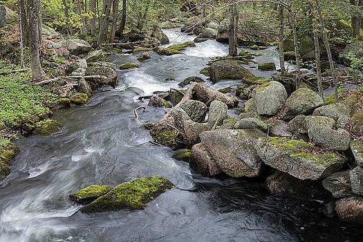 Nubanusit Brook, New Hampshire by Morgain Bailey