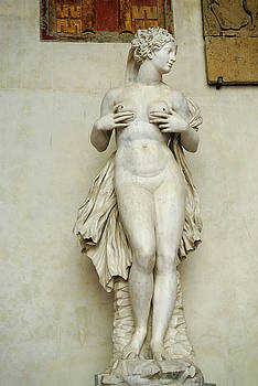 Reimar Gaertner - Nude female marble scultpure by Camilliani from Palermo fountain