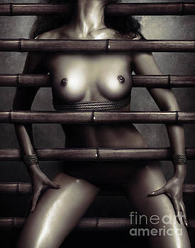 Nude woman body restrained with bamboo sticks by Oleksiy Maksymenko