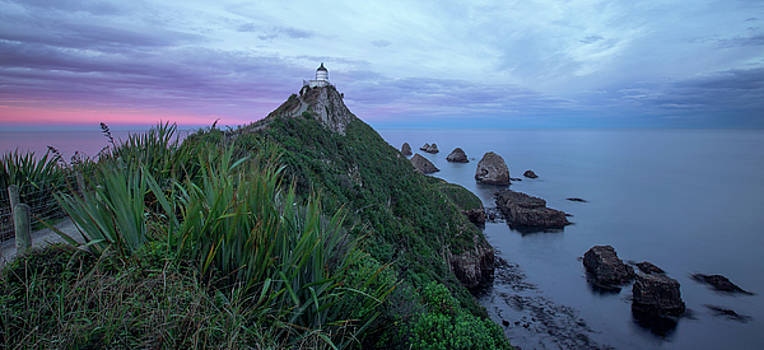 Nugget Point Lighthouse by Renee Doyle