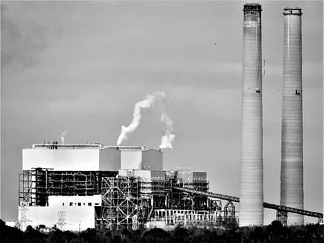 Nuke Plant Crystal River by Mario Carta