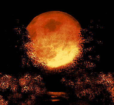 Nuptial golden moon by Rolly Mouchaty
