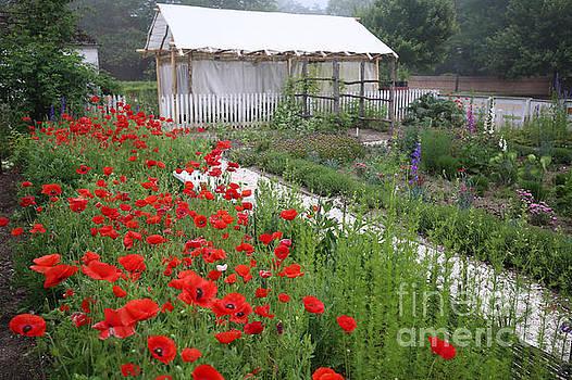 Nursery Garden May Flowers by Rachel Morrison
