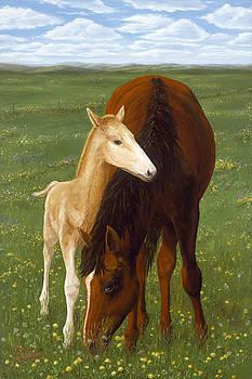 Doug Kreuger - Nurturing Nature