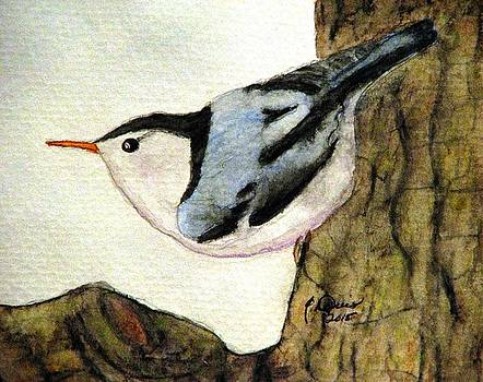 Nuthatch by Angela Davies