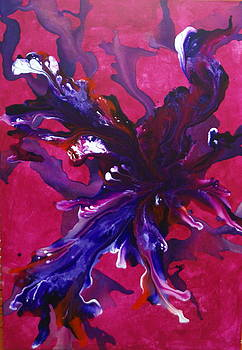 Nw Nr3 by Sonia Passoni