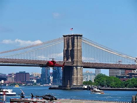 NY Bridge by Vijay Sharon Govender
