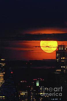 Regina Geoghan - NYC Blue Moon Rising