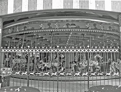Barbara McDevitt - NYC Central Park Carousel