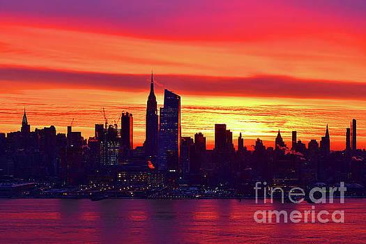 Regina Geoghan - NYC Dawn Dazzle