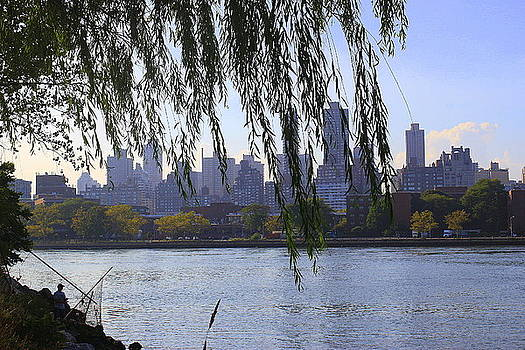 NYC Skyline- A View from Socrates  Sculpture Park by Dora Sofia Caputo Photographic Design and Fine Art