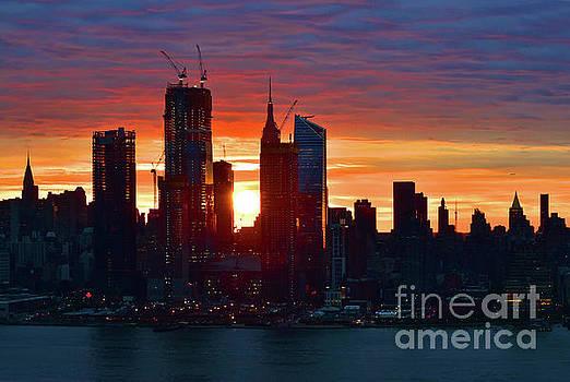 Regina Geoghan - NYC Sunrise Orange on Blue