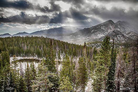 Nymph Lake by Crystal Socha