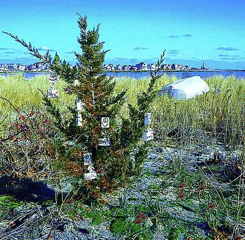 O Christmas Tree 2 by Carol Sutherland