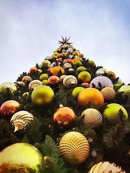O Christmas Tree by Chris Montcalmo