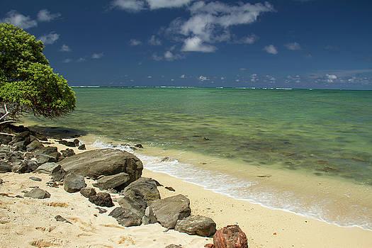 Oahu's East Coast 4 by Debby Richards