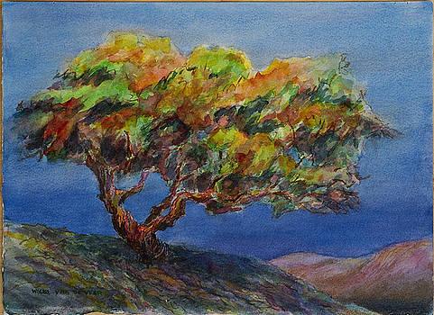 Oak at the End of the Day by Wicki Van De Veer